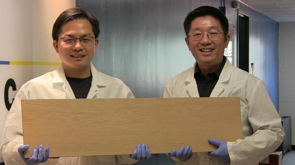 New Method to Make Wood As Strong As Titanium Alloys