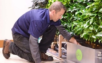 GSky® Highlights Unique Living Green Wall Maintenance Program